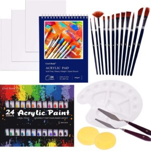 Acrylic Paint Set, 46 Piece Professional Painting Supplies Set, Includes 24 Acrylic Paints, 12 Painting Brushes, Canvas, Palette, Acrylic Painting Pad